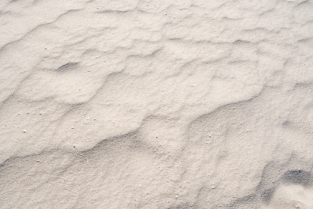 열 대 섬에 텍스처 모래의 세부 사항 여름 배경 및 여행 디자인입니다.