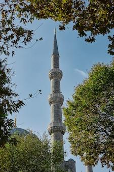 Деталь исторической мечети сулеймания в старой части стамбула на фоне голубого неба и зеленых деревьев турция стамбул