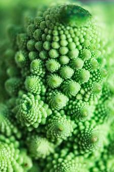 야채 romanesco 브로콜리 텍스처 패턴의 세부 사항입니다. 건강 식품 개념.