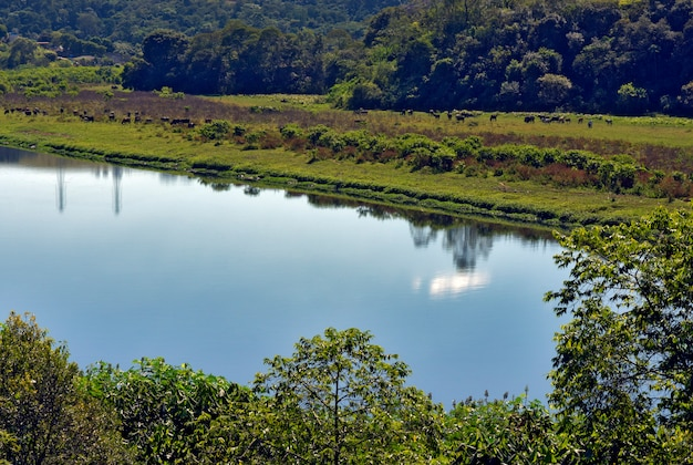 Detail of river of blue waters, bordered by trees and grass. pirapora do bom jesus, sao paulo, brazil