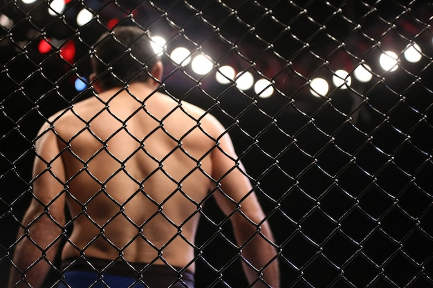 Detail of the side grid of the octagon mma arena.