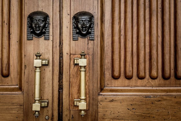Detail of two bronze sphinx heads on an old wooden door - around 100 years old, italian palace in north italy