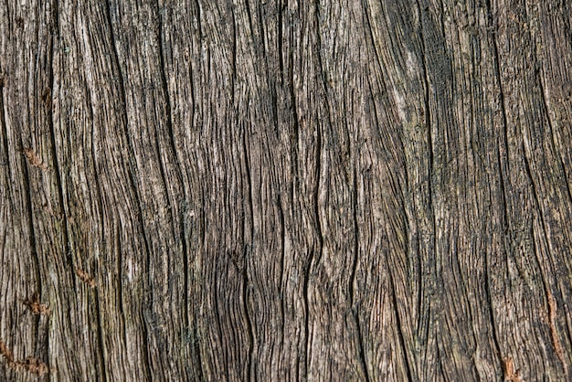 Detail of wooden background