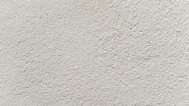 Details of the cream-colored cement wall for the background.