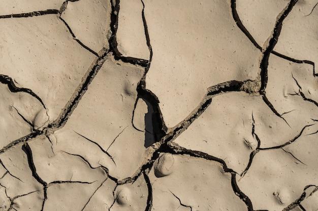 Детали потрескавшейся сухой грязи в солнечном свете, текстуры.
