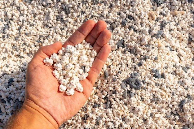 カナリア諸島、フェルテベントゥラ島の北にあるコラレホの町の近くのポップコーンビーチの詳細。スペイン