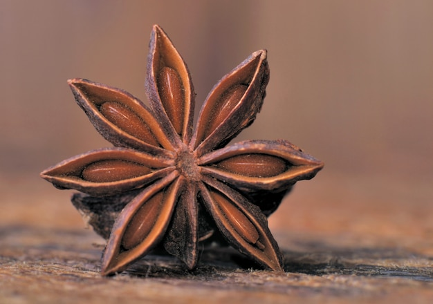 Details of a star anise