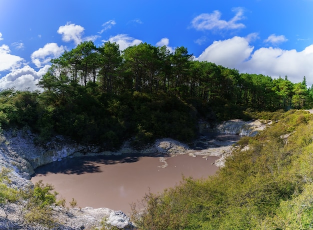 Devils ink pot crater pool at wai-o-tapu geothermal area , rotorua , north island of new zealand