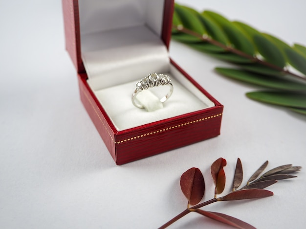 Diamond rings next to white engagement ring box in red box and leaves on white background