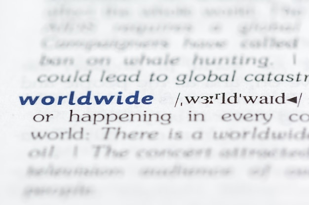Dictionary definition of word