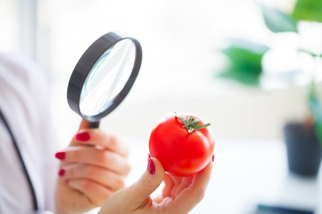 다이어트. 의사 영양사는 그녀의 사무실에서 토마토를 들고 있습니다. 자연 식품과 건강한 라이프 스타일의 개념