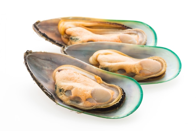 Diet mussels tasty white group