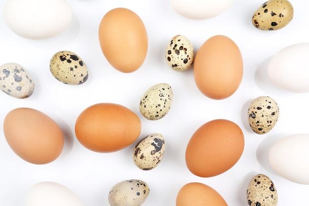 白の上にランダムに横たわっているさまざまな鶏の卵