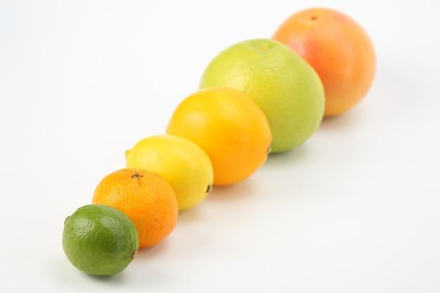 白いテーブルの上のさまざまな柑橘系の果物