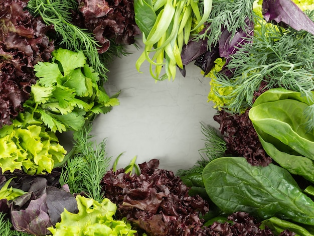 さまざまな食用の新鮮な緑、緑と紫のハーブが灰色の背景に配置され、中央にコピースペースがあります