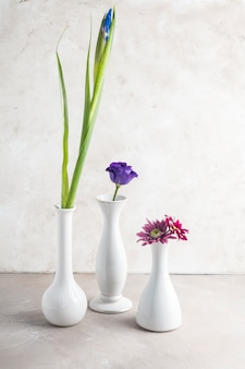 Different flowers placed in white vases