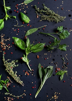 Different herbs in black table, top view