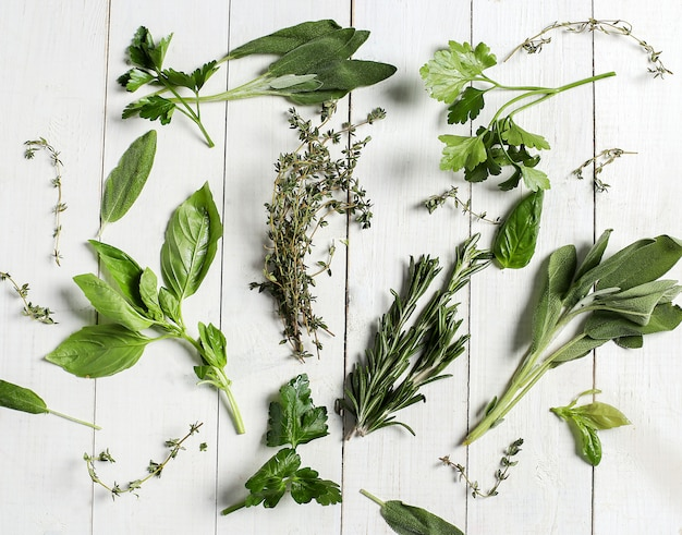 Different herbs in white wooden table, top view