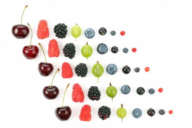 Different juicy berries are laid out in rows