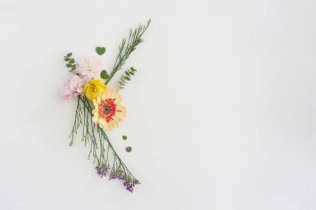 Different kind of flowers on white background