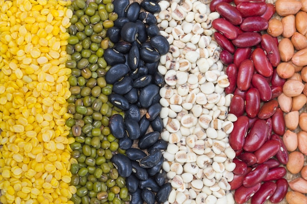 Different kinds of bean seeds