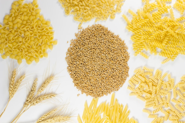 Different kinds of pasta. grains of wheat and wheat spikelets. top view. white background