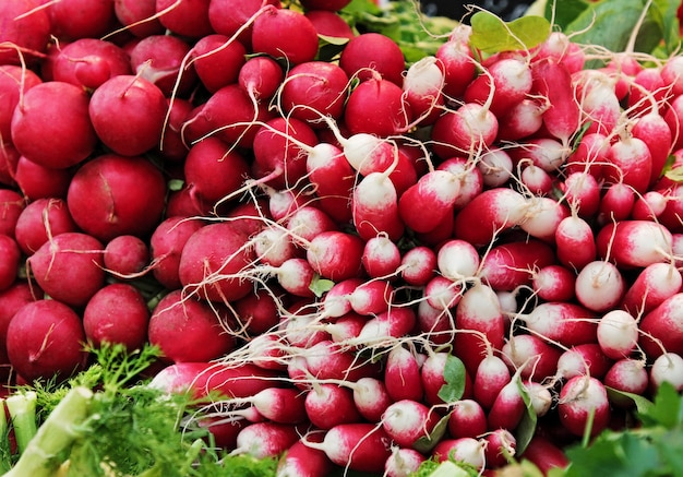 Different kinds of radish at market.