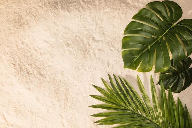 Разные листья на песке