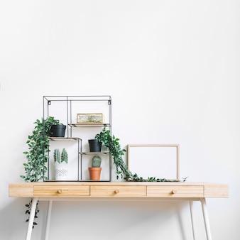 Different plants on desk