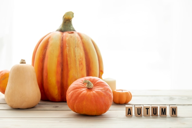 Different pumpkins on wooden table