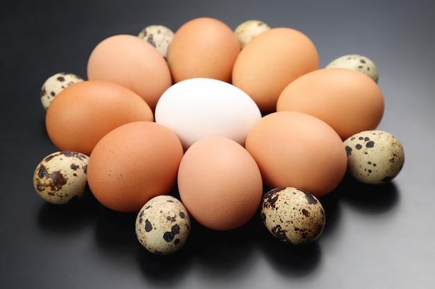 さまざまなウズラと鶏の卵が暗闇に横たわっています