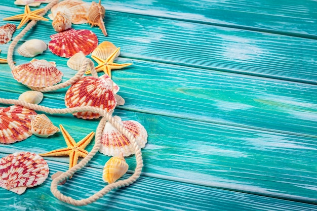 Different sea shells on color wooden background