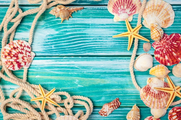 Different sea shells frame on wooden background
