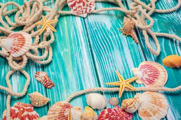 木製の色の異なる貝殻