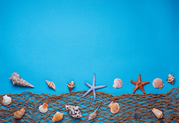 Different seashells and fishnet on blue background
