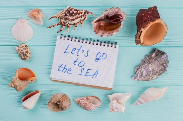 Морские раковины различной формы и ноутбук на синем фоне