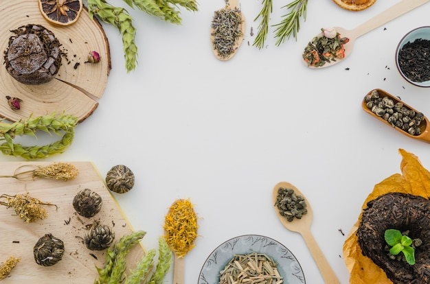 Different type of herbs isolated on white backdrop