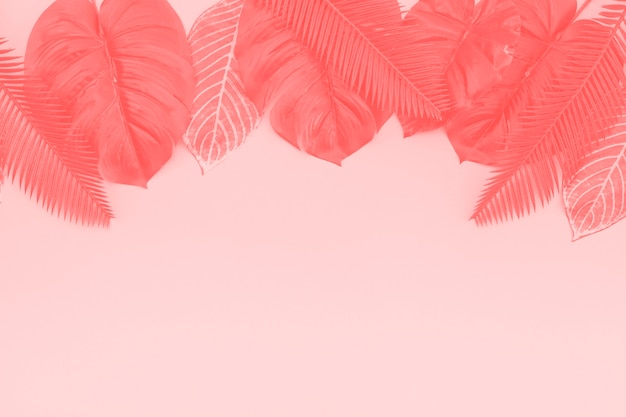 Different types of coral leaves against pink background