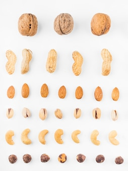 Different types of dried fruits on white backdrop