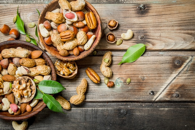 Different types of nuts in bowls with green leaves.