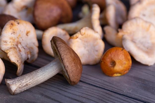 나무 테이블에 식용 버섯의 종류 채식 음식 섬유질과 미량 영양소가 풍부한 건강 식품