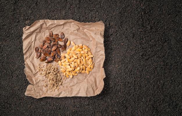 갈색 토양에 구겨진 크래프트 종이에 다양한 종류의 씨앗