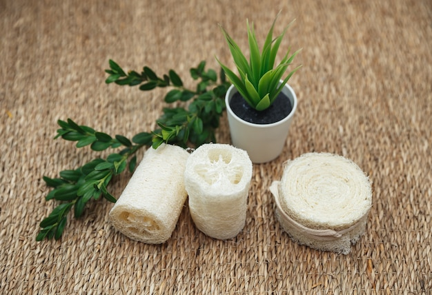 Различные типы безотходных губок. натуральная губка люффа с зелеными растениями. экологичные аксессуары для ванной и гигиены.