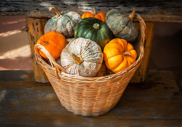 Different types of pumpkins in the straw basket on the wooden background