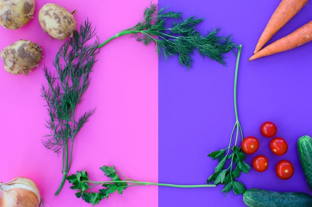 이중 배경에 다른 야채 - 분홍색과 보라색, 야채 - 감자, 당근, 양파, 토마토, 오이, 채소. 건강한 다이어트.