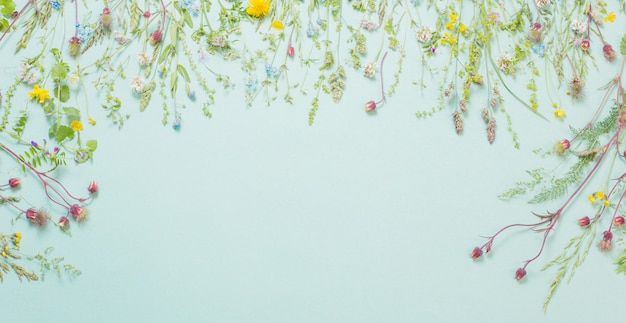 Различные полевые цветы на фоне бумаги