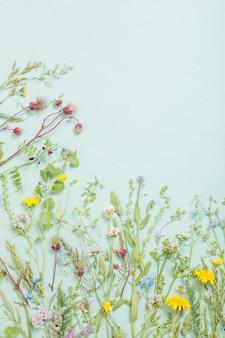 紙の表面にさまざまな野生の花