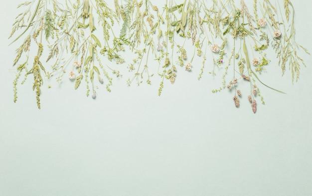 紙の壁にさまざまな野生の花
