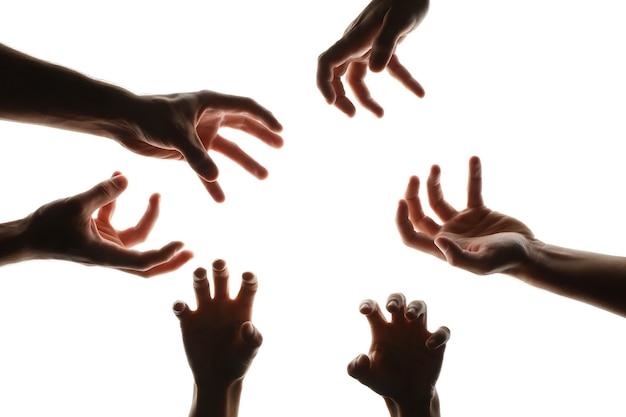 Руки разных зомби, изолированные на белом фоне