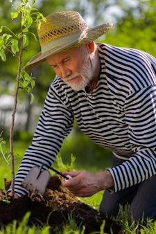 땅을 파다. 그냥 심은 나무 근처에 땅을 파고 밀짚 모자를 쓰고 수염 난 은퇴 한 남자